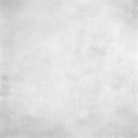 abstract white grey background or texture Stock Photo - 19468714