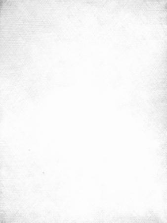 sur fond blanc: fond blanc