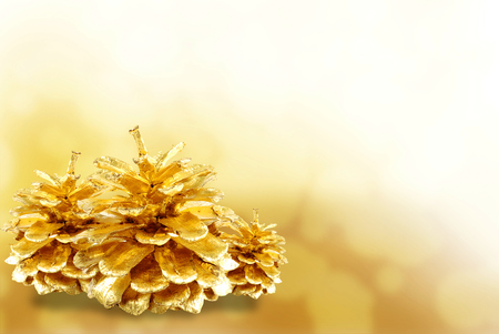 pine cone: Golden pine cone isolated on white