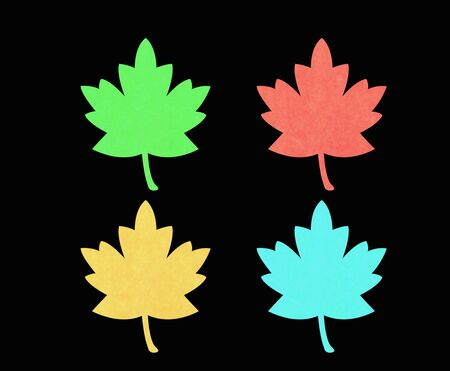 sycamore: red, green, blu and orange maple leaf. Stock Photo