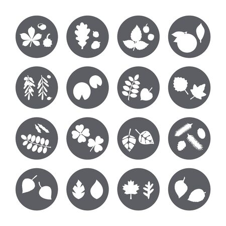 silhouette leaves vector set circle icon.
