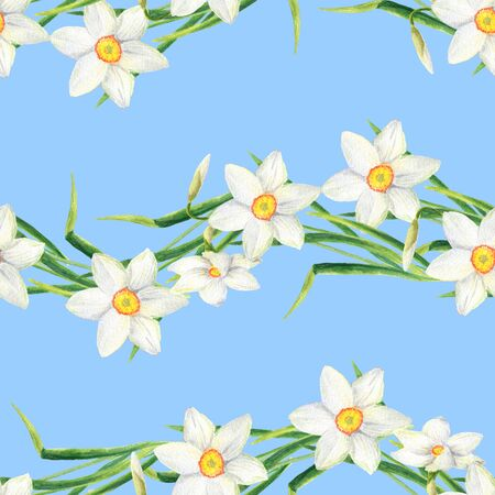 Watercolor narcissus flower seamless pattern. Hand drawn daffodil line illustration. Floral design for textile, wallpaper, wrapping, greeting card, scrapbooking, wedding invitation and package. Imagens