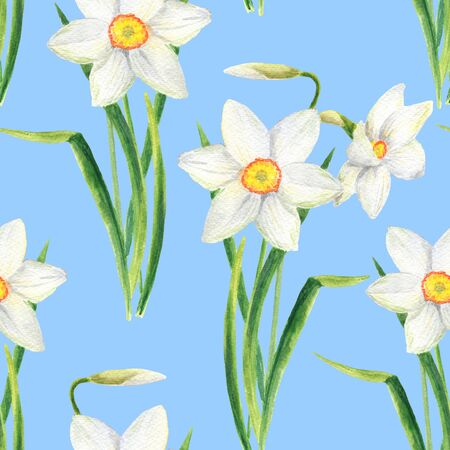 Watercolor narcissus flower seamless pattern. Hand drawn daffodil bouquet illustration isolated on blue background. Floral design for textile, wallpaper, wrapping, card, scrapbook, invitation.