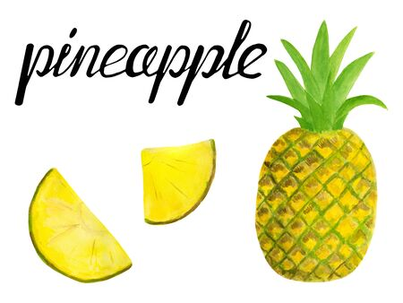 Watercolor pineapple set. Hand drawn tropical slices and fruits illustration isolated on white background. Design for textile, menu, cards, scrapbooking, food packaging, wrapping. Reklamní fotografie
