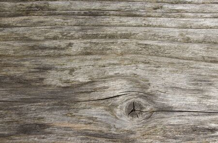 Old grey wood plank texture background. Horizontal uncouth weathered plank