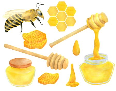 Watercolor apiculture set. Hand drawn bee, honey jar, dipper spoon, honeycomb. Illustration isolated on white background for design, decoration, food packaging Imagens