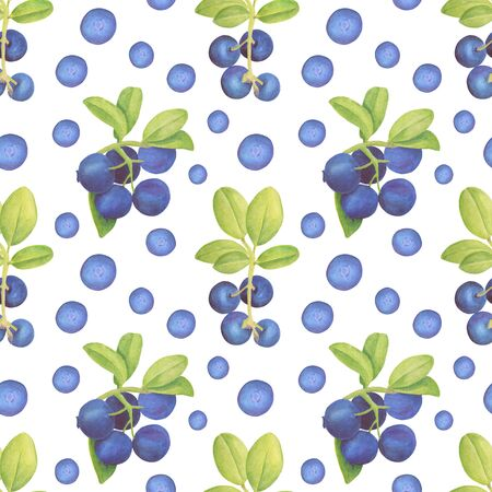 Watercolor blueberry seamless pattern. Hand drawn branches with bilberry and leaves on white background. Zdjęcie Seryjne