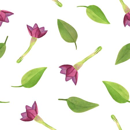 Watercolor flower buds of pink tobacco with leaves seamless pattern.