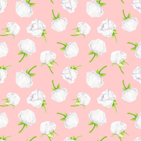 White watercolor peony flower and buds seamless pattern. Hand drawn illustration on pastel pink background. Scattered plants for greeting card, invitation, wedding, wrapping paper, printing