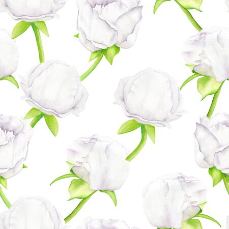White watercolor Peony flower and buds seamless pattern. Hand drawn illustration on white background. Design for greeting card, invitation, wedding, summer decoration, wrapping paper, printing
