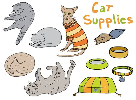 Outline cat supplies set. Hand drawn colorful vector illustration. Pet lounger, bowl, toy, collar, sweater and kittens in different poses for decoration, banners, print, cattery, veterinary, pet shop