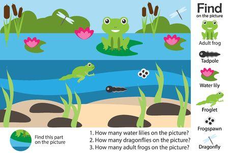Activity page, pond with frog in cartoon style, find images and answer the questions, visual education game for the development of children, kids preschool activity, worksheet, vector