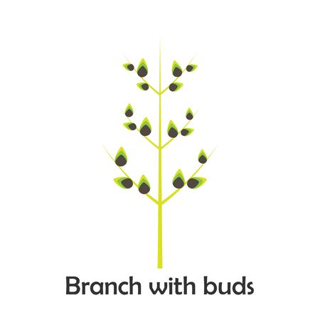 Branch with buds in cartoon style, spring card for kid, preschool activity for children, vector