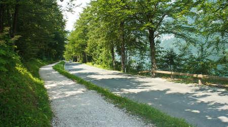 Road around the lake Bohinj near Julian Alps mounntains