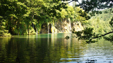 Waterfalls and tree, beautiful nature landscape, Plitvice Lakes in Croatia, National Park