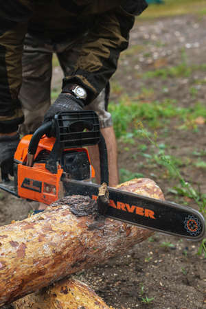Close up view of chainsaw in tourists hands cutting thick fallen tree trunk for firewood. Tourism, hiking, outdoor activities, camping reality, useful skills. Bashkortostan, Russia, 30.06.2019 Editorial