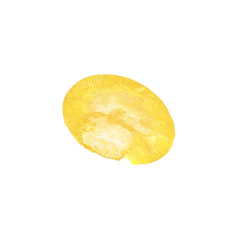 Yellow watercolor circle paint stain isolated on white paper texture background. Imagens