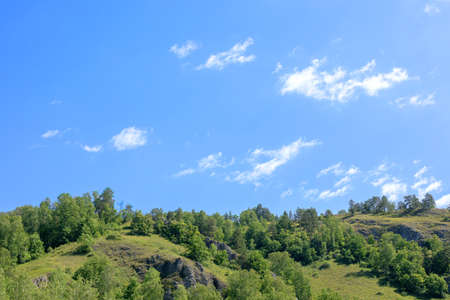 bright summer blue sky above the green forest growing on top of the mountains. Beautiful summer landscape with mountains, blue sky and trees. Stockfoto
