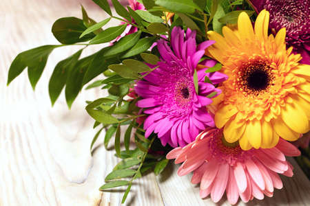 Close-up of beautiful multicolored bouquet of gerbera flowers on wood table background. Greeting card with place for inscription. Botanical room decor or presentation background with flowers on side