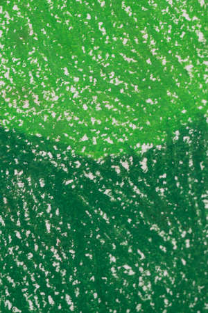 green grunge textured abstract background. dark and light green pastel painted surface. Stockfoto