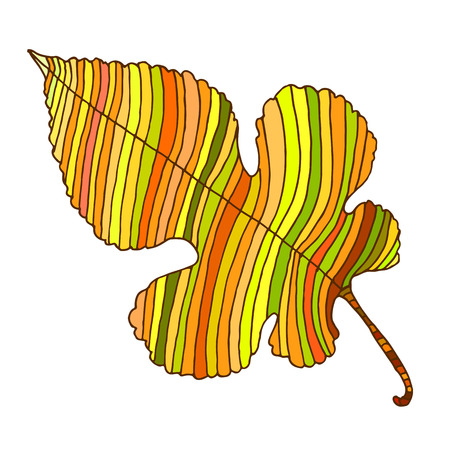 Beautiful, colorful line, autumn leaf, cartoon style, isolated on white background. Vector hand drawn illustration.