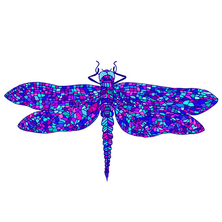 Colorful dragonfly icon. Illustration