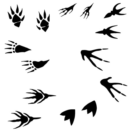 collect: Collection of hand drawing, imprint of paws of monsters, cartoon style, black silhouette of a track, isolated white background.