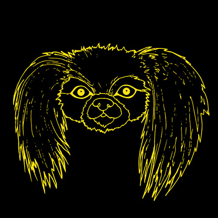 Muzzle Pekingese dog, yellow color outline isolated on black background, vector hand drawing card with animal face.