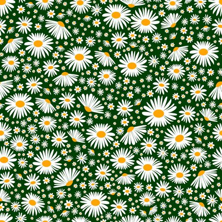 Field chamomiles seamless floral background. Vector daisy meadow spring, summer flowers texture. Trendy ditsy floral wallpaper for print, fashion, textile, fabric, decoration, wrapping.