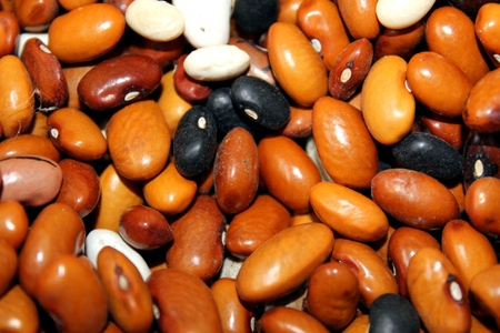 pinto bean: mixed dried beans abstract background