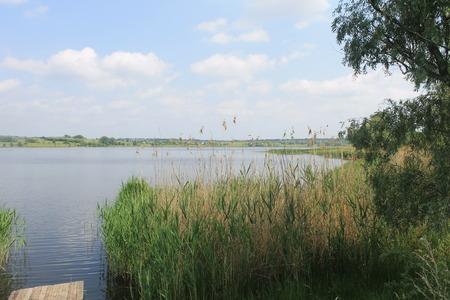 rushy: River Saksagan in Ukraine Stock Photo