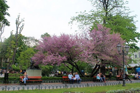 odessa: Odessa city park