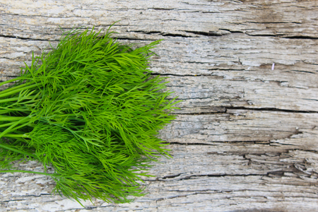 dill: Fresh dill on wooden background