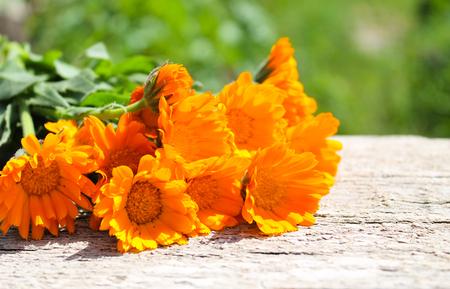 Calendula flowers on the wooden background Standard-Bild