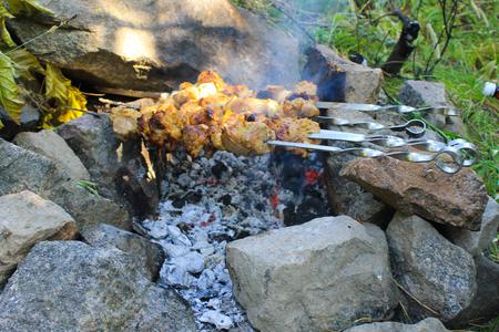 shish: Shish kebab on bonfire