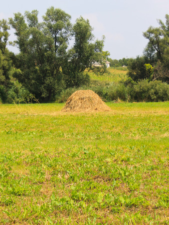 ranch background: Haystacks on the meadow Stock Photo