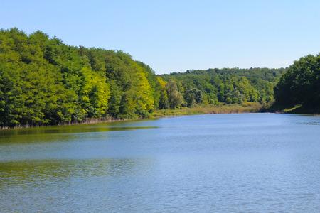 backwater: Beautiful lake on summer Stock Photo