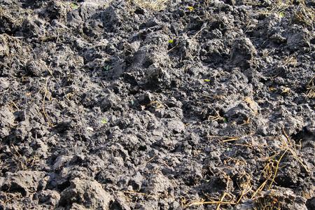 plowed: Texture of plowed field