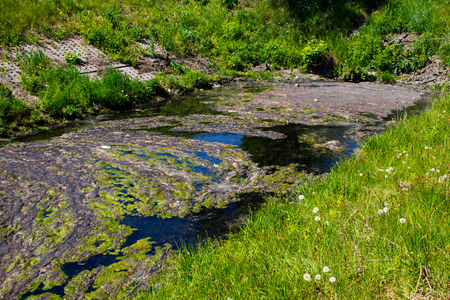 Water drain in the canal. Green algae in water surface.  Environmental pollution Stock Photo