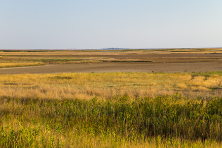 View on the Sivash lake in Ukraine