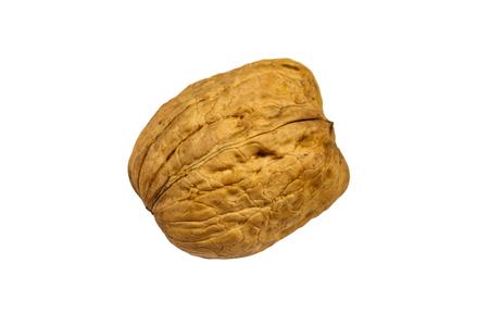 Single large walnut isolated on white background