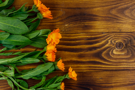 Calendula flowers on the wooden background. Top view, copy space Zdjęcie Seryjne