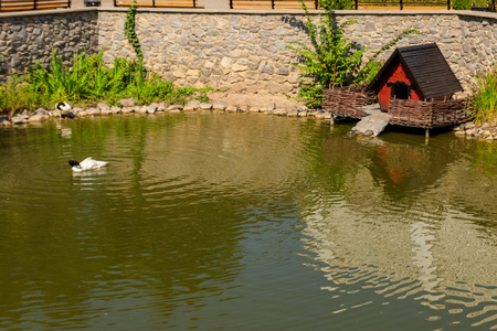 Wooden house for water birds and turtles on a lake in city park