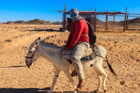 Tourist ride a donkey in Arabian desert, Egypt