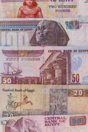 Background of different egyptian pounds banknotes. Egyptian currency