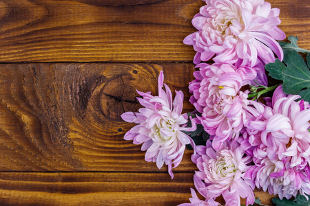 Beautiful chrysanthemums on wooden background. Top view, copy space Stock Photo - 124772734