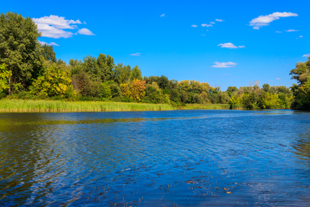 Summer landscape with beautiful river, green trees and blue sky Фото со стока