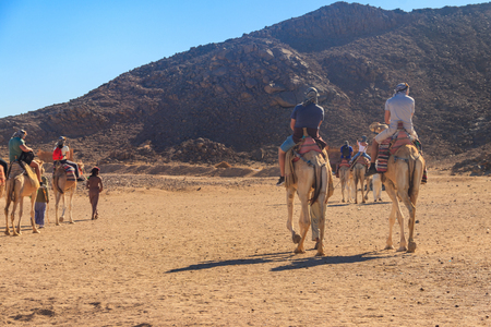 Group of tourists riding camels in Arabian desert, Egypt Stock Photo