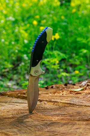 Folding knife sticking out of a wooden stump in green forest 版權商用圖片