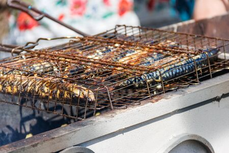 Mackerel cooking on the grill Stock Photo